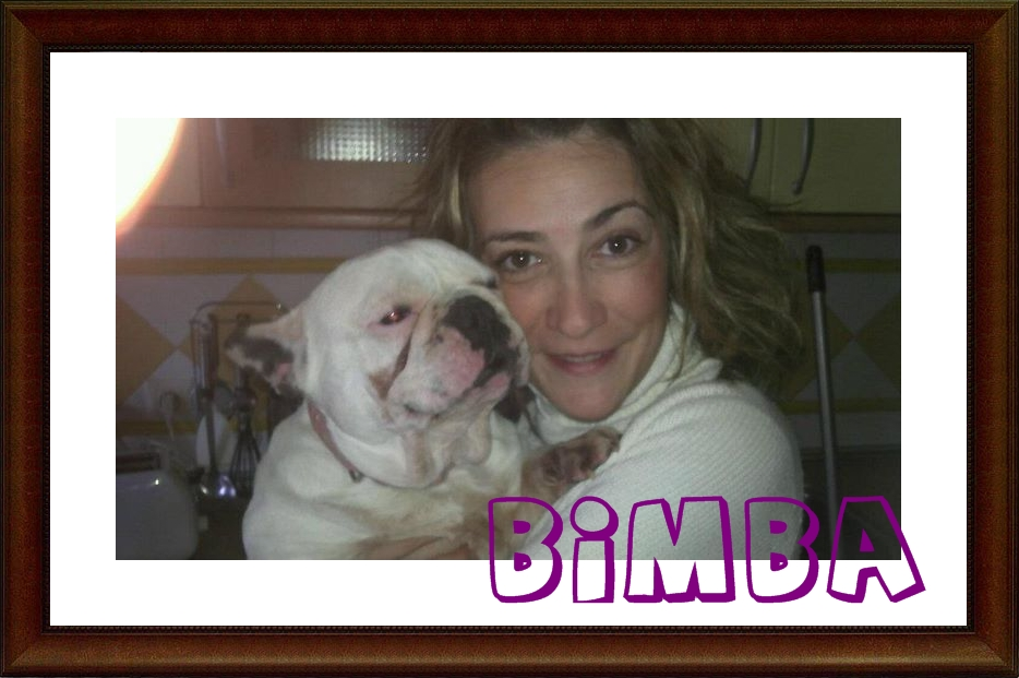 Bimba adoptada Sos Frenchie