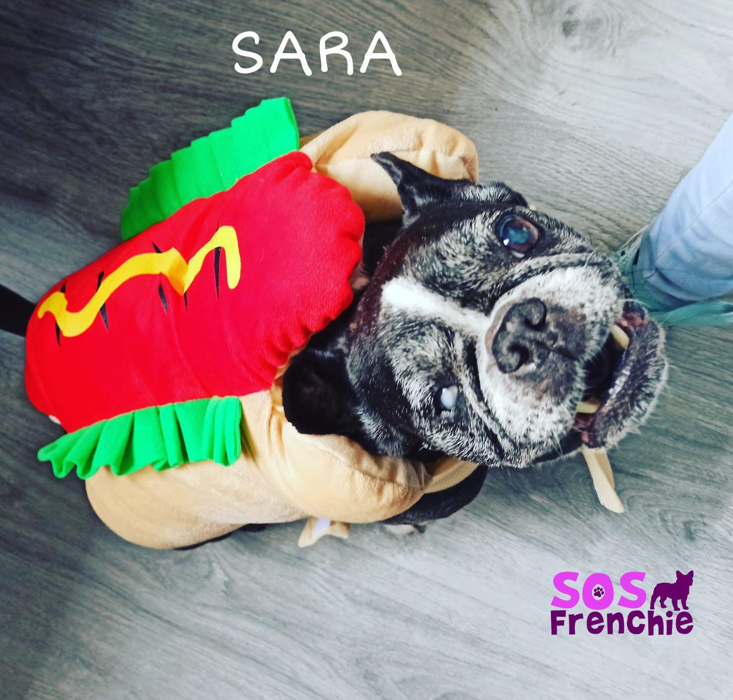 SARA_FACE3
