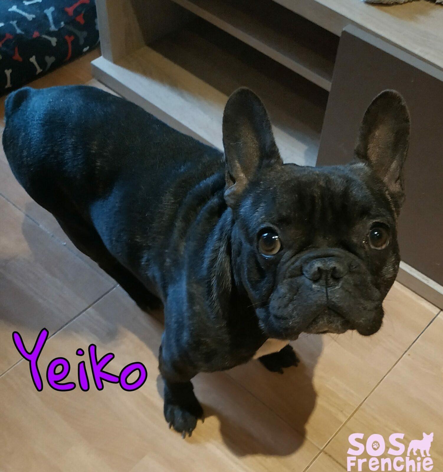 YEIKO