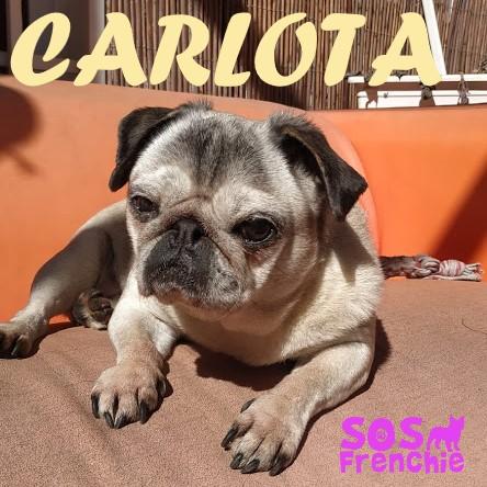 CARLOTA.2.